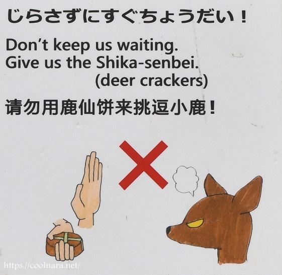 鹿せんべいをあげる時に注意すること