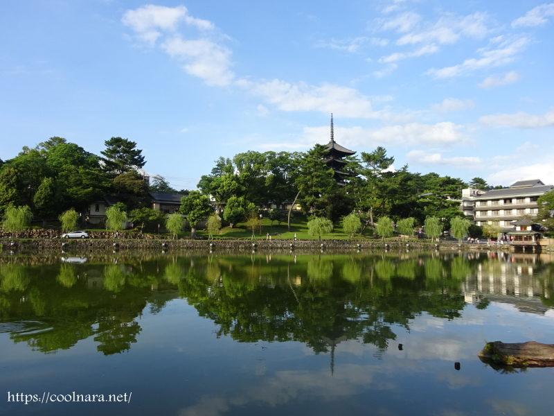 猿沢池園地(さるさわいけえんち)奈良公園